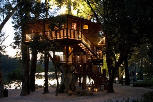 Arquitetura e decoração de casa na árvore - Casa sobre árvores de eucaliptos 002