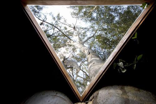 Arquitetura e decoração de casa na árvore - Casa sobre árvores de  eucaliptos 007
