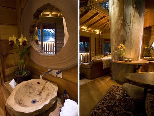 Arquitetura e decoração de casa na árvore - Casa sobre árvores de eucaliptos 009