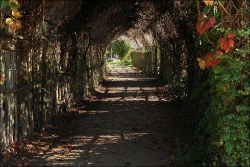 Dicas de decoracao para casa - Decoração de Jardim - Decoração do Jardim do Palácio de Versalhes 007